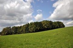 Landschap in de zomer Stock Afbeelding