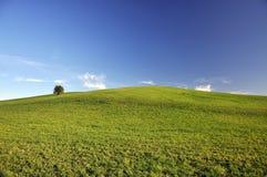 Landschap in de zomer Stock Foto's