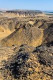 Landschap in de zwarte woestijn dichtbij Baharya Stock Afbeelding