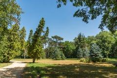 Landschap, Dendrological-Park van de Nationale Reserve askania-Nova, de Oekraïne Royalty-vrije Stock Foto's