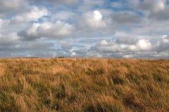Landschap in Devon. Het hooi van wolken Royalty-vrije Stock Afbeelding