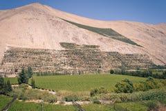 Landschap dichtbij aan Pisco Elqui Royalty-vrije Stock Foto's