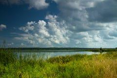 Landschap dichtbij de rivier Stock Afbeelding