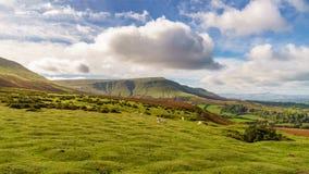 Landschap dichtbij Hay Bluff, Wales, het UK stock foto's