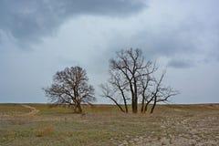 Landschap die een onweer voorafgaan Stock Fotografie