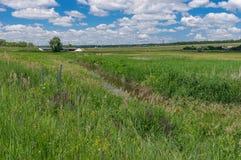 Landschap die kleine die rivier Sura afschilderen met riet en wilde grassen wordt overwoekerd Stock Afbeelding