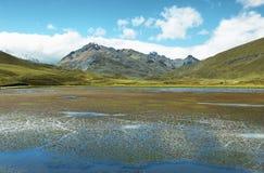 Landschap die naar Pastoruri-gletsjer gaan Stock Foto