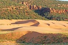 Landschap in Duinen van het Zand van het Koraal de Roze SP2 Royalty-vrije Stock Afbeelding