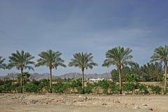 Landschap Egypte royalty-vrije stock afbeelding