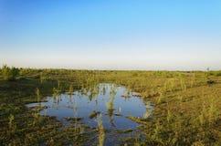 Landschap en aard Stock Foto