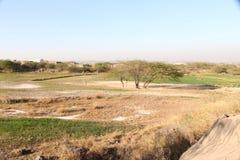Landschap en de Groene gebieden van Punjab stock fotografie