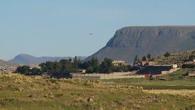 Landschap en Hoeves dichtbij Puno-Stad, Peru stock videobeelden