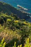 Landschap en vegetatie in Cinque Terre Overzees, landschap en vegetatie van Ligurië Provincie van La Spezia stock afbeeldingen