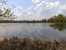 Landschap en water Stock Foto's