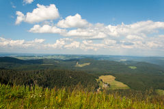 Landschap in Feldberg Duitsland in het Zwarte Bos. Royalty-vrije Stock Foto's