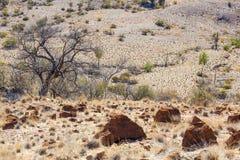 Landschap. Flinderswaaiers. Zuid-Australië royalty-vrije stock foto's
