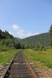 Landschap Forest Railway Royalty-vrije Stock Fotografie