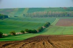 Landschap geroepen Moravian Toscanië, Moravië, Tsjechische Republiek Stock Afbeelding