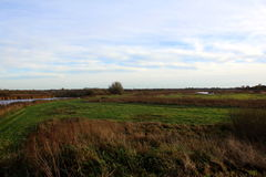 Landschap Groote Wielen Royalty-vrije Stock Foto