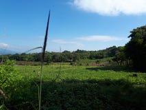 landschap Guatemala royalty-vrije stock foto