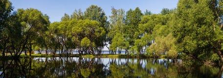 Landschap, heldere dag Bomen, water, heldere hemel royalty-vrije stock afbeelding