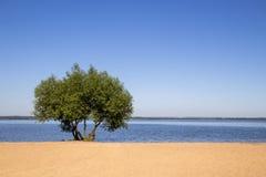 Landschap, heldere dag Waterreizen, zand, hemel Royalty-vrije Stock Foto