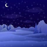 Landschap, het bos van de nachtwinter Stock Afbeelding