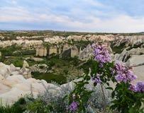 Landschap Is het Goreme Nationale Park enkel buiten het dorp van Goreme, 12 km-het oosten van Nevsehir en in het hart van Cappado royalty-vrije stock fotografie