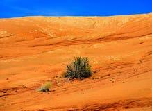 Landschap in het Nationale Park van Bogen Stock Fotografie