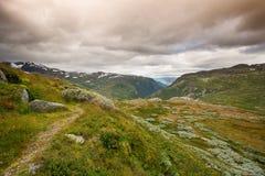 Landschap in het nationale park van Jotunheimen stock afbeeldingen