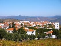 Landschap het Noord- van Portugal met bergen en wijngaarden royalty-vrije stock fotografie