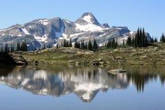 Landschap in het Provinciale Park van Monashee Royalty-vrije Stock Foto's