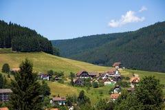Landschap in het zwart-Bos, Duitsland Royalty-vrije Stock Foto's