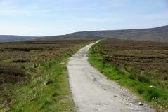 Landschap in Ierland Royalty-vrije Stock Fotografie