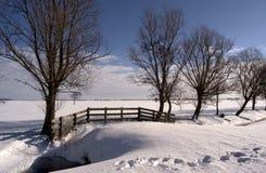 Landschap II van de winter Stock Afbeelding
