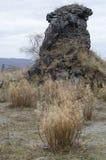 Landschap IX van basaltkolommen Royalty-vrije Stock Afbeelding