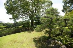 Landschap in Japan Royalty-vrije Stock Foto