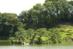 Landschap in Japan Stock Afbeeldingen
