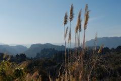 Landschap Kong Lor Royalty-vrije Stock Afbeeldingen