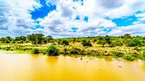 Landschap langs de Olifants-Rivier dichtbij het Nationale Park van Kruger in Zuid-Afrika royalty-vrije stock foto's