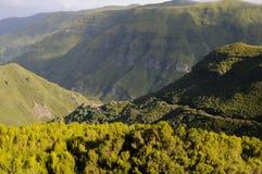 Landschap Madera Stock Fotografie