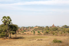 Landschap met Bagan-ruïnes, Myanmar Royalty-vrije Stock Foto