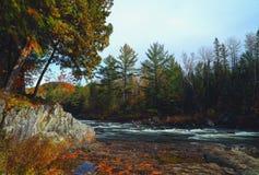 Landschap met bergenbomen en een rivier vooraan royalty-vrije stock foto