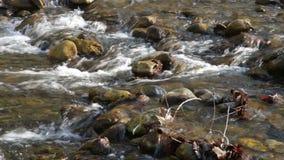 Landschap met bergenrivier in zonnige de winterdag stock video