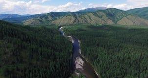 Landschap met bergrivier en bos stock footage