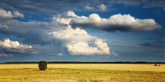 Landschap met bewolkte hemel Stock Afbeeldingen