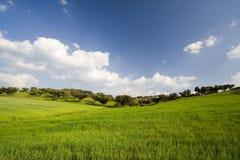 Landschap met blauwe hemel Stock Foto