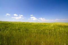 Landschap met blauwe hemel Royalty-vrije Stock Foto