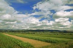 Landschap met blauwe hemel Stock Afbeeldingen