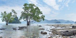 Landschap met bomen en eilanden Royalty-vrije Stock Afbeelding